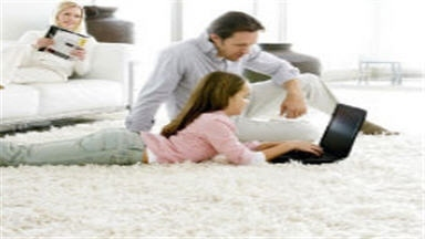 Tanin Carpet Cleaning, Water Damage & Mold Removal Chicago - Chicago, IL