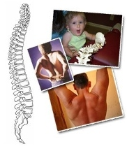 Bergman Family Chiropractic - Homestead Business Directory