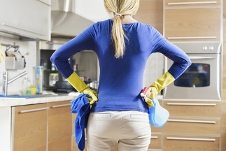 Maid To Perfection of Central Dupage - Glen Ellyn, IL