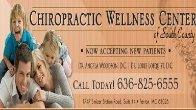 Chiropractic Wellness Center of South County