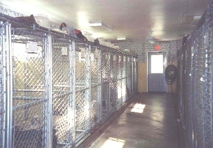 Westinn Kennels K9 Bed N' Breakfast
