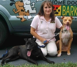 Bark Busters Collegeville