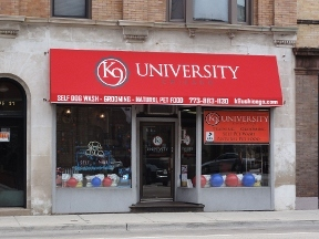 K9 University - Chicago, IL
