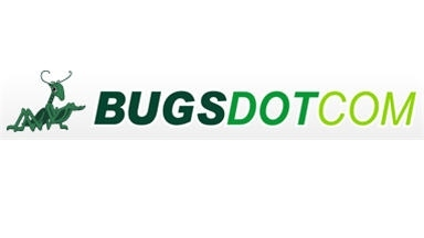 Bugsdotcom INC
