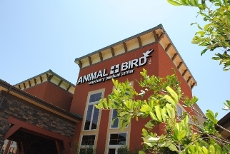 Animal & Bird Veterinary Medical Center