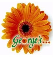 George's Flowers - Roanoke, VA