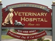 Ludwigs Corner Veterinary Hospital