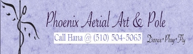Phoenix Aerial Art and Pole