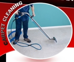 Reliable Carpet Cleaning - Homestead Business Directory