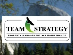 Team Strategy Inc.