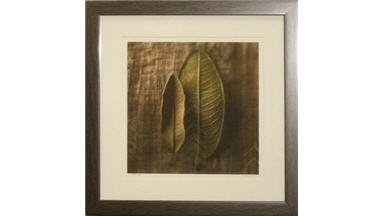 Manders Picture Framing Service - Milwaukee, WI