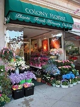 Colony Florist INC