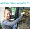 Squeaky Clean Windows