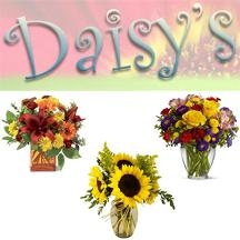 Daisy&#039;s Flowers