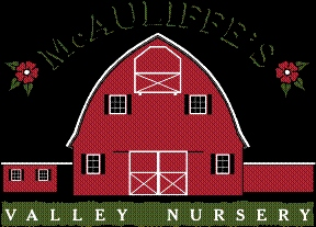 McAuliffe&#039; s Valley Nursery