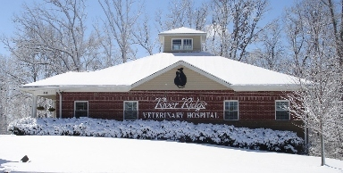 River Ridge Veterinary Hosp