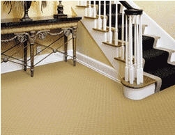 Advantage Carpet Cleaning