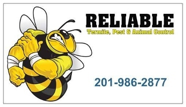 Reliable Pest Control