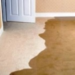 Magic Steam Carpet Cleaning Co - Scottsdale, AZ