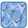 Dna Paternity Testing Centers - Portland, OR