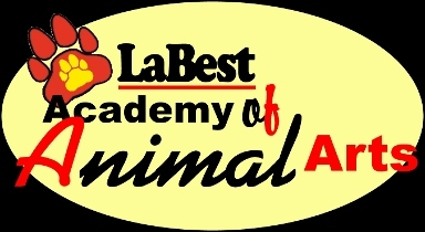 La Best Academy of Animal Arts