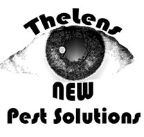 New Pest Solutions