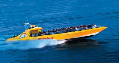 Seadog Speedboat & Architectural Cruises
