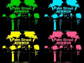 Palm Street Pub &amp; Grill
