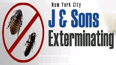 J and Son Exterminating