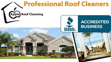 Apple Roof Cleaning Of Pasco & Pinellas - St. Petersburg, FL