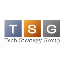 Tech Strategy Group Inc