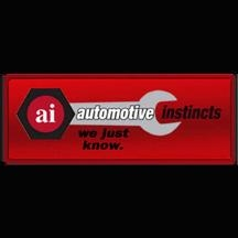 Automotive Instincts