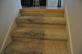 Guaranteed Carpet Cleaning