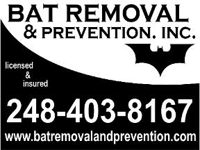 Bat Removal And Prevention, Inc.