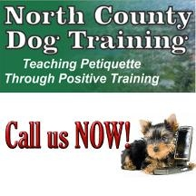 North County Dog Training