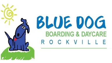 Blue Dog Boarding & Daycare Kensington - Kensington, MD