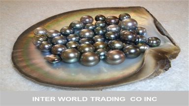 Inter World Trading Co INC