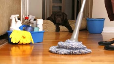 Devoted Home Cleaning