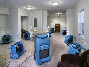 Water Damage Gastonia