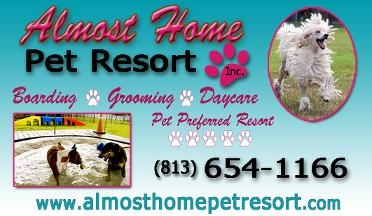 Mobile Dog Grooming Riverview Fl