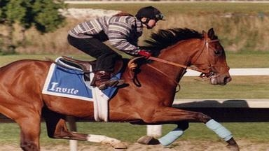 INDIAN ROCK STABLES - Saugus, MA