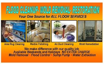 Tanin Carpet Cleaning & Water Damage, Mold Remediation Arlington Heights - Arlington Heights, IL