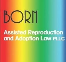 Suzanne Born Adoption & Assisted Reproduction Lawyer