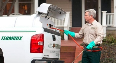 $50 Off Terminix Pest Control - Prescott Valley, AZ