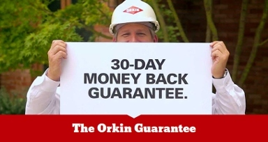 Orkin Pest & Termite Control - District Heights, MD