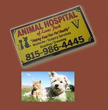 Animal Hospital of Loves Park