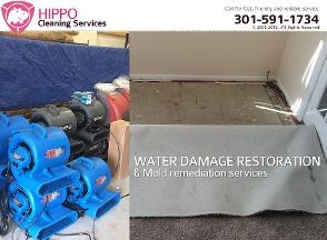 Hippo Cleaning Svc