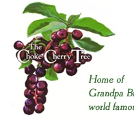 The Choke Cherry Tree - Pagosa Springs, CO