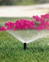 Greenup Lawn & Sprinklers - Black Eagle, MT