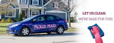 MOLLY MAID of St. Petersburg / Clearwater - Pinellas Park, FL